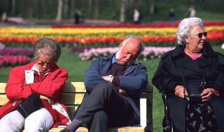 People taking siesta. Keukenhof.Lisse.Holland